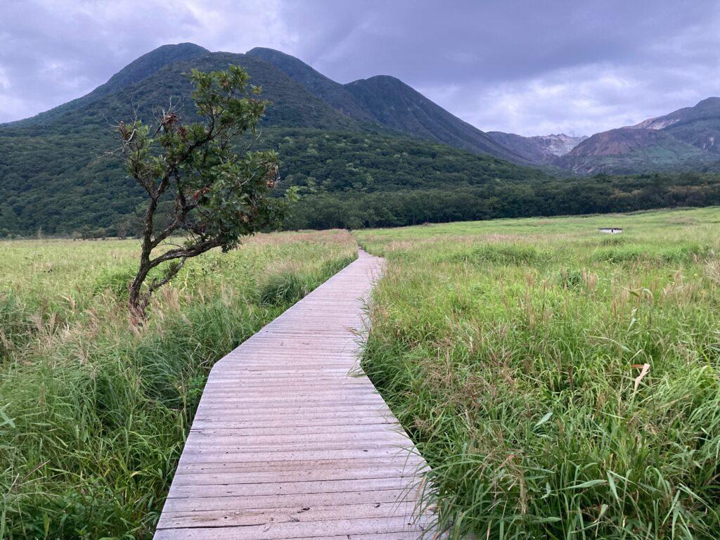 登山口木道
